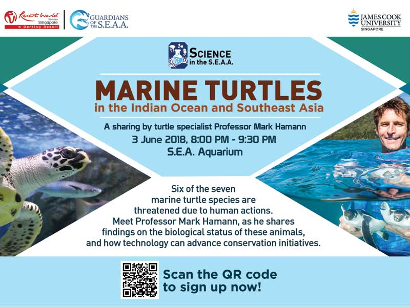 Science in the S.E.A.A. Marine Turtles